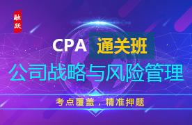 CPA名师通关班(精讲+习题+冲刺)--公司战略与风险管理图片