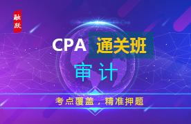 CPA名师通关班(精讲+习题+冲刺)--审计图片