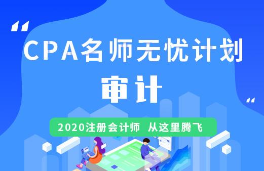CPA名师无忧班(导学+基础+精讲+习题+冲刺)--审计图片