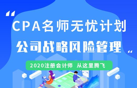 CPA名师无忧班(导学+基础+精讲+习题+冲刺)--公司战略与风险管理图片