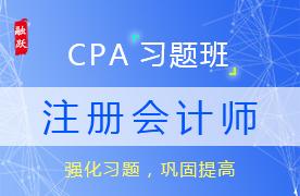 CPA名师注册会计师习题班图片