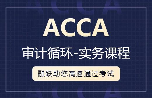 ACCA 审计循环-实务课程图片