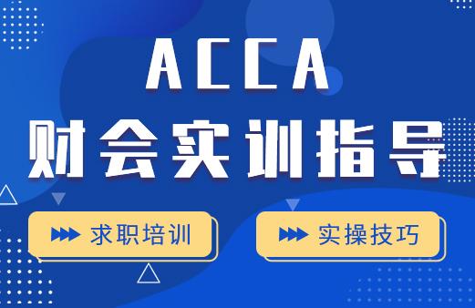 ACCA财会实训指导