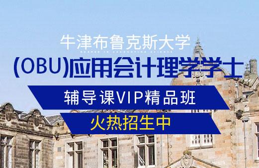 OBU论文辅导课——VIP精品班